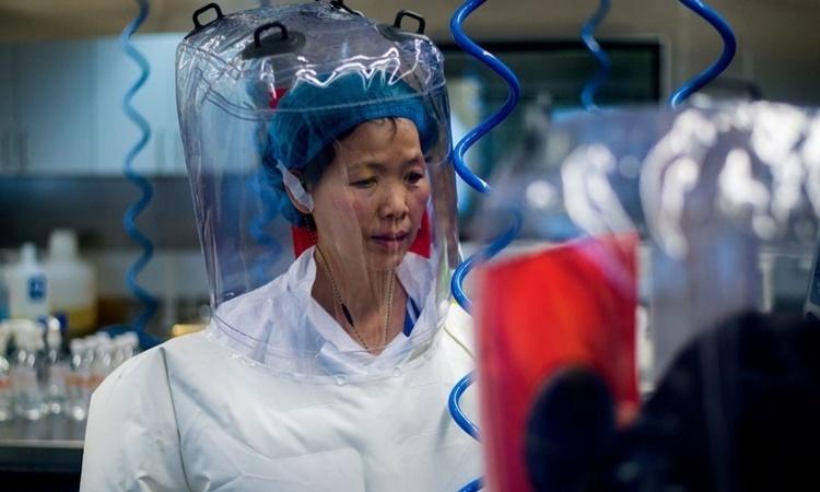 Hoài nghi 'rò rỉ nCoV' từ phòng thí nghiệm Vũ Hán