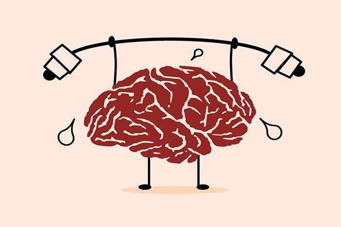 Vận động trí óc thật nhiều có giúp chúng ta đốt cháy lượng calo dư thừa?