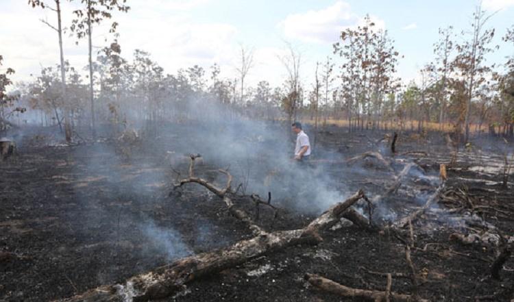 Nan giải công tác thu hồi đất lâm nghiệp bị lấn chiếm tại Ea Bung