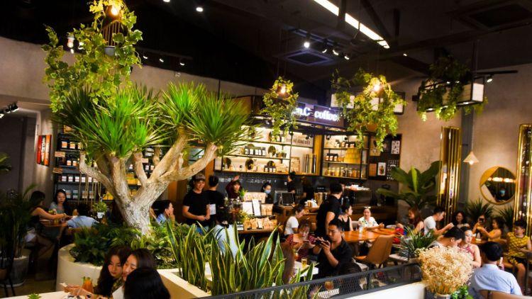 Dừng chân tại 4 quán cafe Buôn Ma Thuột độc đáo nhất