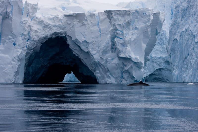 Băng tan vỡ ở Nam cực