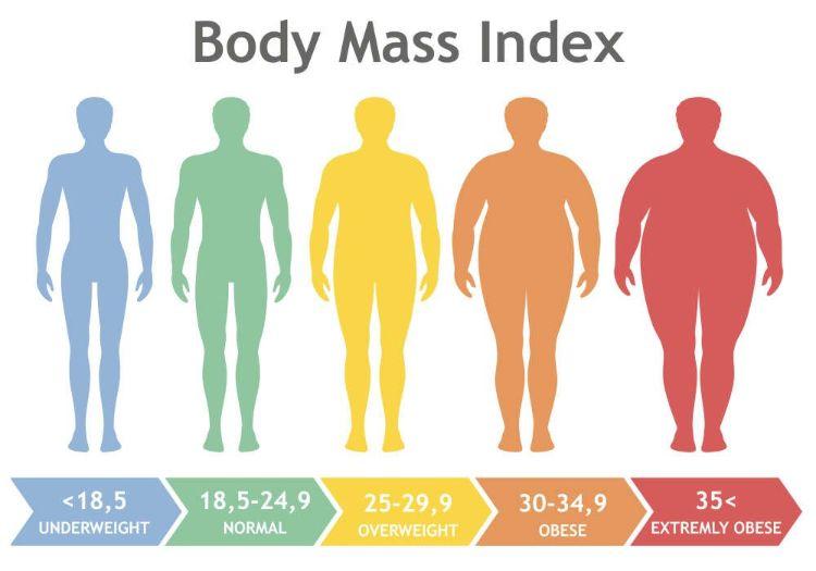 Chỉ số BMI – Bạn có béo như bạn vẫn nghĩ?