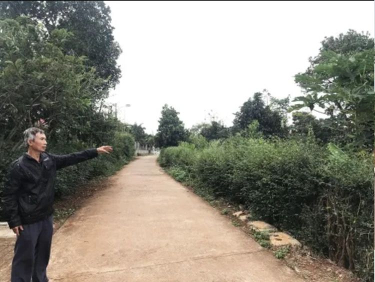 Một đoạn đường tại thôn 1