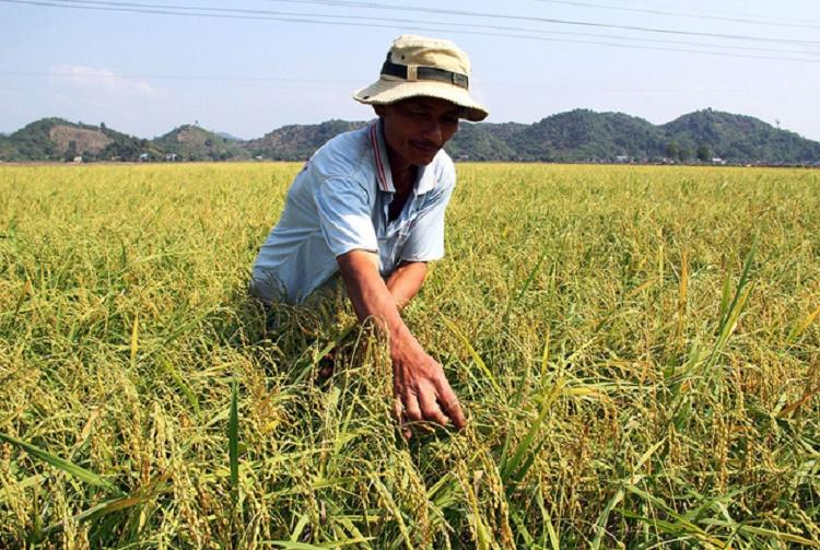 """Lâm Đồng: """"Biến rác thành tiền"""", giúp hội viên có vốn làm ăn"""