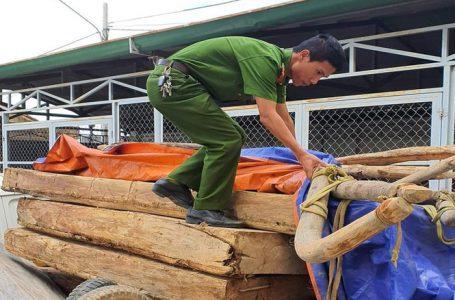 Đăk Lăk: Công an bắt lâm tặc, chủ rừng muốn giành công