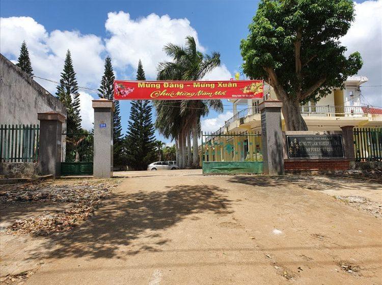 Công ty lâm nghiệp ở Đắk Lắk ngập trong nợ nần chồng chất