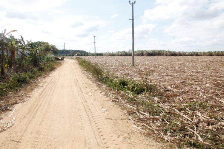 Đường nội đồng thôn 10