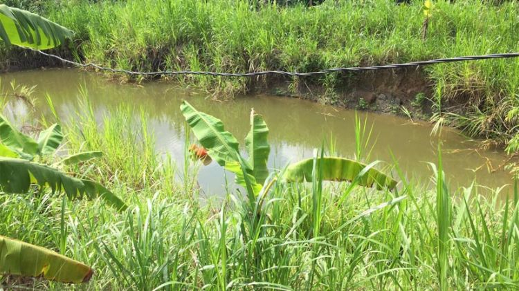 Gia Lai: Cứu con đuối nước, cả hai mẹ con tử vong
