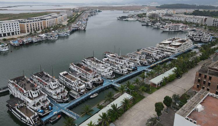 tàu du lịch ở Hạ Long