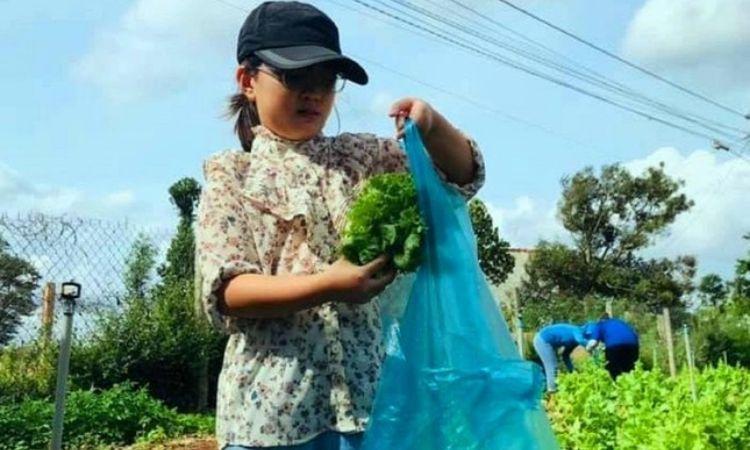Đắk Lắk: Cô bé 10 tuổi đập heo đất mua 100 thùng mì ủng hộ chống dịch