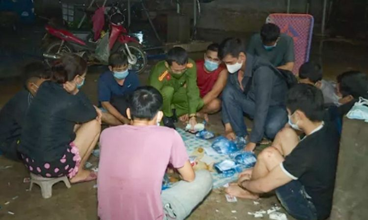 Đắk Lắk: Kéo nhau vào lò mổ heo đánh bạc bất chấp dịch bệnh