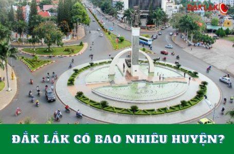 Đắk Lắk có bao nhiêu huyện