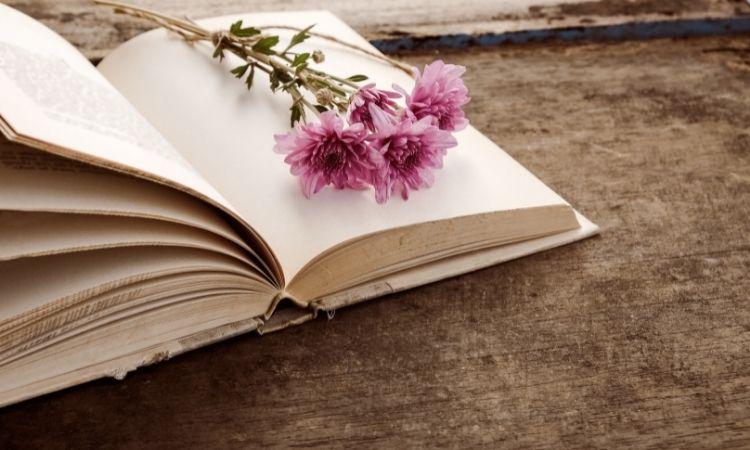 Top 5 cuốn sách hay thay đổi cuộc đời bạn