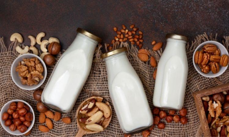 Lợi ích tuyệt vời của sữa hạt mà bạn chưa biết