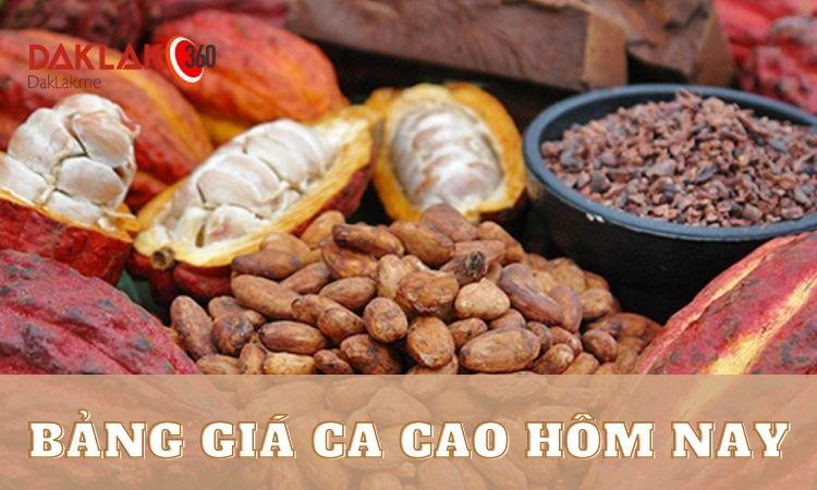 Giá Ca Cao Hôm Nay | Bảng Giá Cacao Mới Nhất